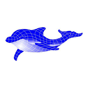 Mod N Dolphin Speedy