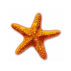 Mod N Seastar