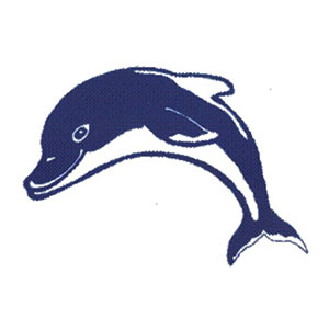 Paradigm Motifs - Dolphin